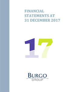 The Group's 2017 Financial Statements
