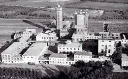Stabilimento di Mantova (1955)