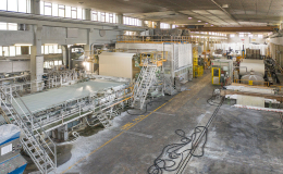 Treviso Plant